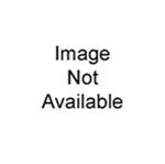 Sony Security NVR-BEZEL3U 3U Front Door for NVR