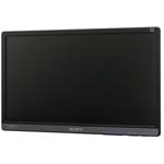 Sony Security SSML22F1 22Inch LCD Security Monitor