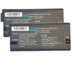 Sony Battery for Sony VGP-BP2EA (2-Pack) Replacement Battery